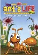 Bug Bites: An Ant
