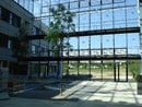 Max Planck Institute for Gravitational Physics