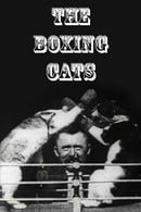 The Boxing Cats