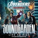 Soundgarden: Live to Rise