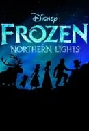Lego: Frozen Northern Lights