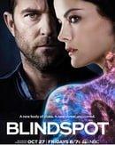 Blindspot                                  (2015- )