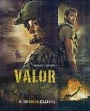 Valor                                  (2017- )
