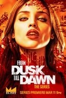 From Dusk Till Dawn: The Series                                  (2014- )