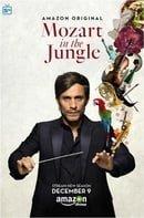 Mozart in the Jungle                                  (2014-2018)