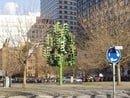5. The Traffic Light Tree London, UK