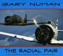 The Radial Pair: Video Soundtrack