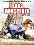 Dog Whisperer with Cesar Millan