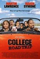 College Road Trip (2008)