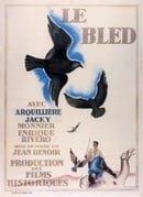 Le bled