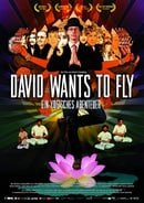 David Wants to Fly