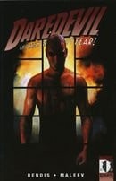 Daredevil, Vol. 13: The Murdock Papers