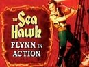 The Sea Hawk: Flynn in Action