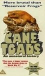 Cane Toads: An Unnatural History