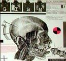 M.A.N. (Military Affairs Neurotic)
