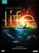 Life                                  (2009-2009)