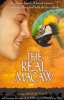 The Real Macaw