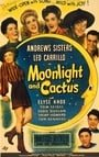 Moonlight and Cactus