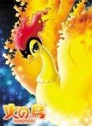 Phoenix :Bird of Fire