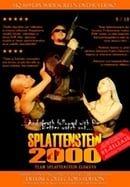 Splattenstein 2000