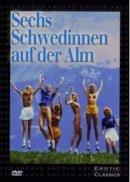 Sechs Schwedinnen auf der Alm
