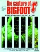The Capture of Bigfoot