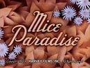Mice Paradise