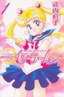 Sailor Moon, Vol. 1