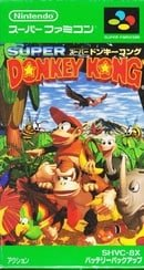Super Donkey Kong (JP)
