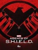 Agents of S.H.I.E.L.D.                                  (2013- )
