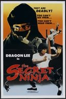 The Secret Ninja