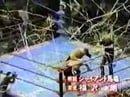 Stan Hansen vs. Toshiaki Kawada (AJPW, 2/28/93)