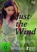 Csak a szél