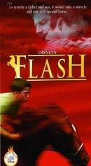 """The Wonderful World of Disney"" Flash"