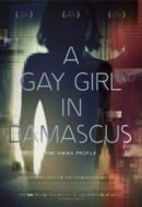 A Gay Girl in Damascus: The Amina Profile                                  (2015)