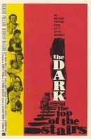 The Dark at the Top of the Stairs                                  (1960)