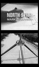 North Star: Mark di Suvero