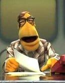 The Muppet Newsman