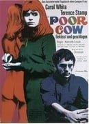 Poor Cow                                  (1967)