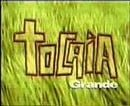 Tocaia Grande