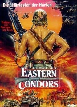 Eastern Condors