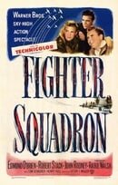 Fighter Squadron