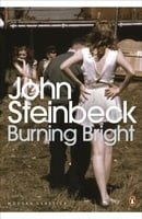 Burning Bright: A Play in Story Form (Penguin Modern Classics)