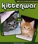 Kittenwar
