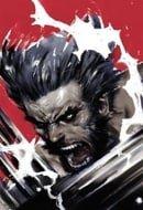 Wolverine: Soultaker TPB (Wolverine (Mass))