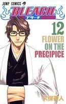 Bleach, Volume 12 (Japanese Edition)