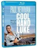 Cool Hand Luke   [Region Free]