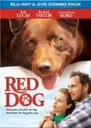 Red Dog BD Combo