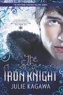 The Iron Knight (Iron Fey, Book 4)