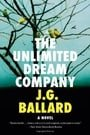 The Unlimited Dream Company: A Novel